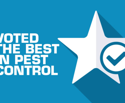 Pest Inc - Best Pest Control Service