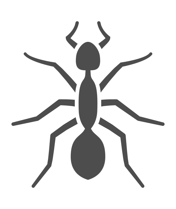 Ant Pest Control Nashville Tennessee